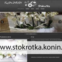 www.stokrotka.konin.pl_.jpg